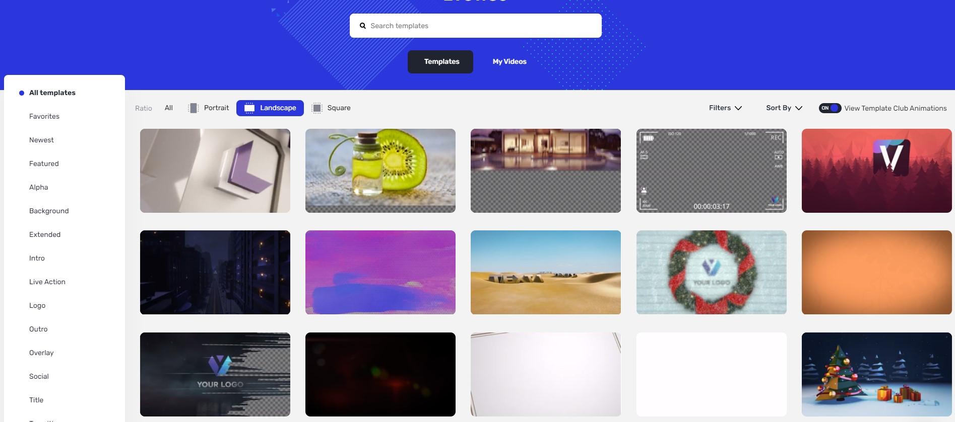 viddyoze asset screen